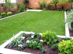 New Lawn Installation Service